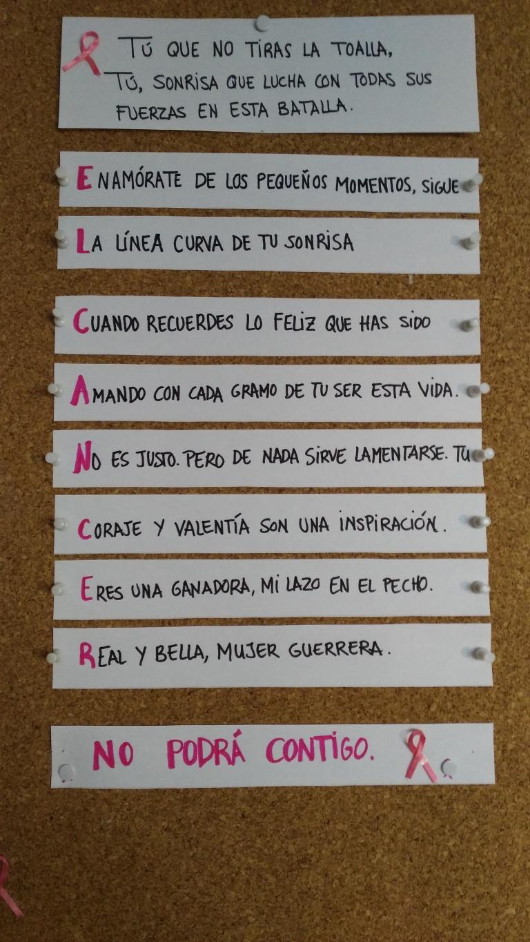 ÚNETE AL ROSA_SILVIA MADERA.jpg